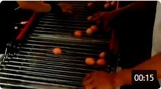 养鸡设备视频-捡蛋机