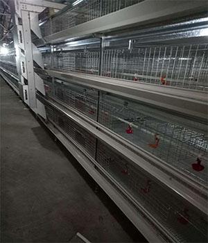 郑州层叠式鸡笼厂家